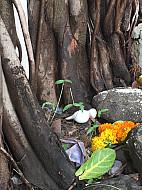 Mumbai flower shrine