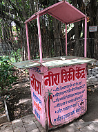 Pune India Pink